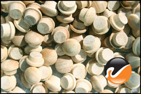 1-4-inch-maple-button-top-wood-plugs.jpg