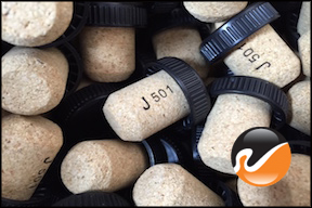 19mm AGGLOMERATED T-Corks with Black Tops