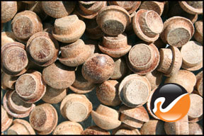 5-16-inch-mahogany-button-top-wood-plugs.jpg