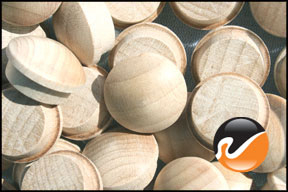 5-8-inch-maple-button-top-wood-plugs.jpg