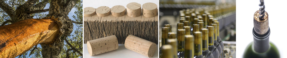Wine Corks from sustainable, natural cork bark. Cork bark grows back. No trees are cut down to produce wine corks!